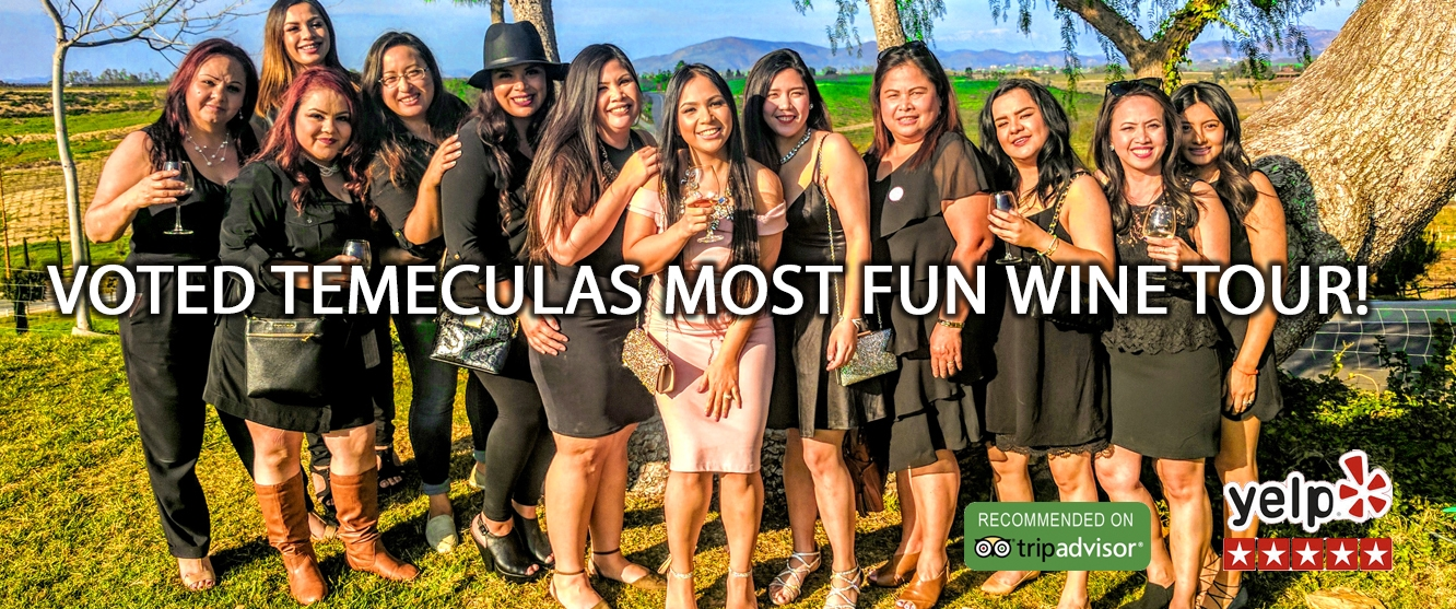Temecula Wine Tours Packages From San Diego